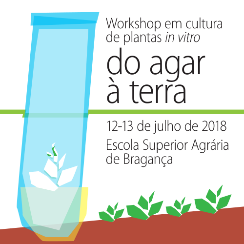 Workshop em cultura de plantas in vitro do agar à terra